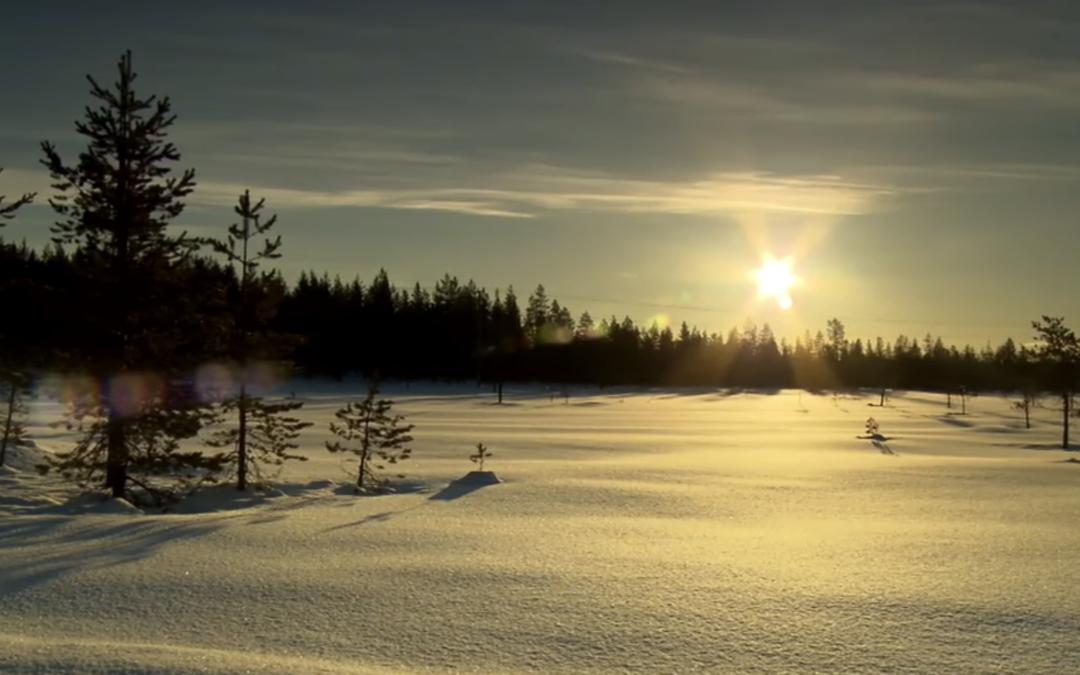 Foto Wintererprobung in Arvidsjaur, Schweden